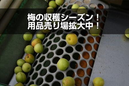 梅の収穫シーズン!用品売場拡大中!